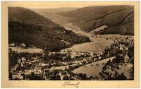 HERRENALB Schwarzwald Württemberg ~1920/25 alte AK mit Vogelschau Teilansicht