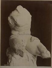 Laocoon sculture grecque Musée Vatican Italie Italia Vintage albumine ca 1875