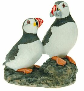 PUFFINS PAIR SAT ON ROCK
