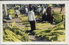 CP Vietnam - Indochine - Saïgon - Marché de cannes à sucre