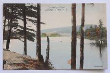 Old handcolored postcard SACANDAGA RIVER, SACANDAGA PARK, N.Y.