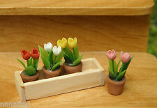 Miniature Dollhouse FAIRY GARDEN ~ Window Box with Tulip Flower Pots ~ NEW