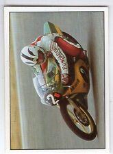 figurina SUPER MOTO PANINI NUMERO 15