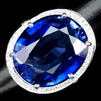VIOLET BLUE TANZANITE RING OVAL 25.10 CT. SAPPHIRE 925 STERLING SILVER SZ 6.25