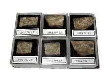 NWA 791 L5 meteorite slice in Square display case Early NWA number