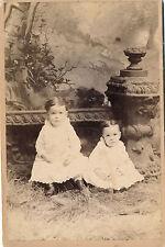 1880-1889 Fraternal Twins Sepia Washington, PA Cabinet Card Rogers Photo