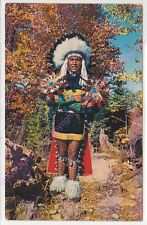 CPSM FOLKLORE INDIENS INDIAN CHIEF IN FULL DRESS COSTUME CHEF INDIEN COSTUME