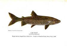 1940's Vintage Fish Art Print ~ Lake Trout