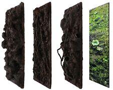 """Terrarium Rückwand Terrawall➕""""Struktur"""" Regenwald 3er Set x 500x500x10mm Neu"""