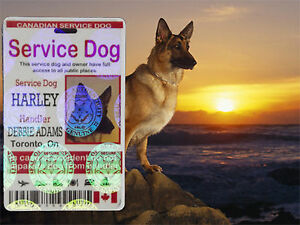 3 Holographic Service Dog ID Card, Canadian Service Animal ID Tag