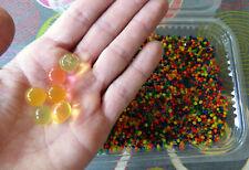5000 Orbeez Billes magiques grossisantes absorbeur d'humidité Kids  TOP ACHAT!