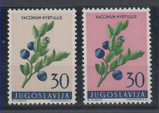 Yugoslavia ERROR different color 1959 MNH **