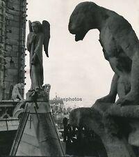 PARIS c. 1950 - Les Chimères de Notre-Dame - Div 95