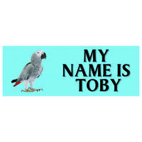 Personalised Parrot Bird Metal Sign Metal Cage Pet Show Talking Budgie Canary