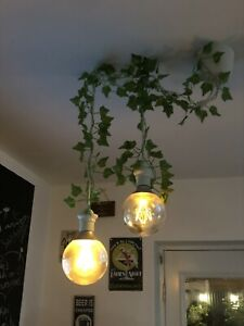 Large Bulbs With Pendant And Decorative Ivy