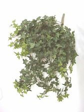 (01417-34047) ARTIFICIAL PLANTA COLGANTE MATA DE COLGAR HIEDRA IVY VERDE OSCURO