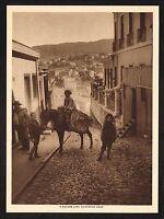 1910s Antique Vintage Hillside Lane Donkey Valparaisio Chile Photo Gravure Print