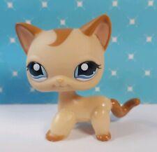Littlest Pet Shop Figur #1024 Shorthair  Cat Katze LPS