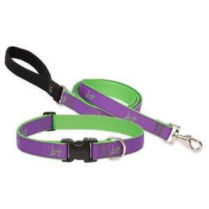 "NEW Hampton Purple & Green Dog Collar or Leash 3/4"" or 1"" by Lupine Club Recycle"