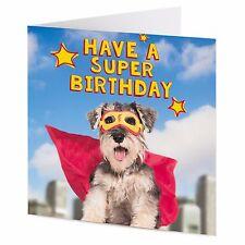HAVE A SUPER BIRTHDAY! funny miniature Schnauzer dog superhero Birthday card