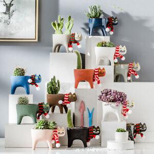 Cute Cat Flower Pots Ceramic Creative Desktop Plant Pots Home Decoration