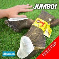 JUMBO ANTLER DOG CHEWS Antos Stag - Large XL - 100% Natural Chew - Calcium