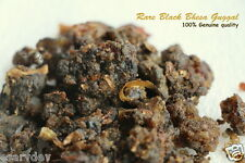 Bdellium Rare Bhesa Guggal Black Guggul 500 gm pooja puja havan Commiphora hurb