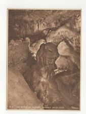 The Witch Of Wookey Wookey Hole Cave Vintage Postcard 153b
