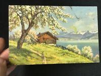 rare postcard- vintage unused  - International-switzerland - Lake ~ tree ~ Cabin