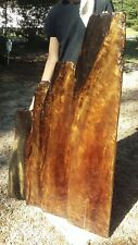 Old Growth Ancient Sinker Cypress Rare Exotic Burl Wood Slab Shelves Made in USA