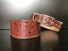 S/M Leather Dog Collar LINED Greyhound Lurcher Whippet Saluki BROWN OSTRICH SKIN