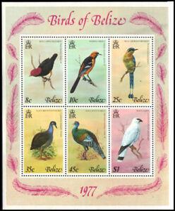 "BELIZE 392a - Birds of Belize ""Souvenir Sheet"" (pa51795)"