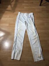Nike Men's Swingman Dri-FIT Piped Baseball Pants, Blue/White, Medium