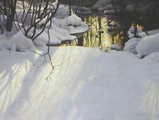 Robert Bateman Art Print Winter Pond Mergansers 1998 Snow Spring Thaw Winter