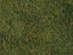 """Walthers SceneMaster HO Scale Tear & Plant Tall Grass (Light Green) 7-7/8 x 9"""""""