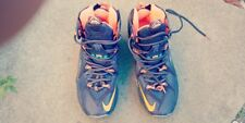 Nike LeBron XII Mens Basketball Shoes, Cave Purple/Hyper Grape/Crimson/Hyper Tu