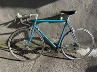 1985 Pinarello Treviso Road Bike + More Details In Bio