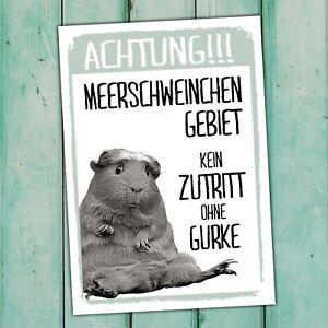 Meerschweinchen Kein Zutritt Gurke Schild lustig Spruch Türschild Warnschild Fun