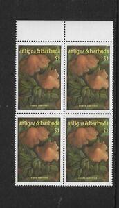 1986 ANTIGUA & BARBUDA -  MUSHROOMS - BLOCK OF FOUR - MINT AND UNHINGED.