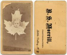 PHOTOGRAPH OF BABY IN MAPLE LEAF BY MORRILL, LITTLE VALLEY, NY, ANTIQUE CDV