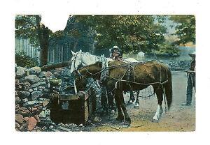 Horse Postcard -Valentine's MEZZOGRAPH Series -Printed in Great Britain-Victoria