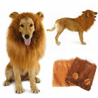 Pet Costume Lion Mane Wig w/ Ears for Large Dog Halloween Clothes Fancy Dress up