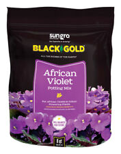 Black Gold  African Violet  Organic Potting Soil