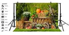10x6.5ft Background Farm Harvest Fruits Scenery Backdrop Studio Photography Prop