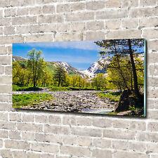 Acrylglas-Bild Wandbilder Druck 140x70 Deko Landschaften Berge Fluss