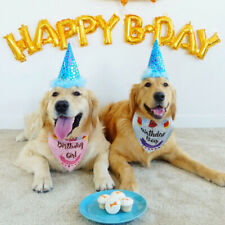 Boy/Girl Pet Birthday Bandana Scarf Dog Cat Puppy Neckerchief Party Blue Pink