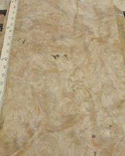 "Chestnut Burl wood veneer 11"" x 30"" raw no backing 1/42' thickness ""AA"" grade"