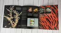 USPS 1980 U.S. COMMEMORATIVE STAMPS CORAL REEFS. U.S.A. BLOCK OF FOUR 15 CENT