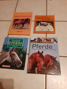 Pferdebücher paket 4 Pferde Bücher Reiten pony