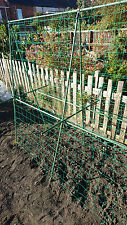 Easynets Pea & Bean Support Frame H: 1.8m L: 1.8m